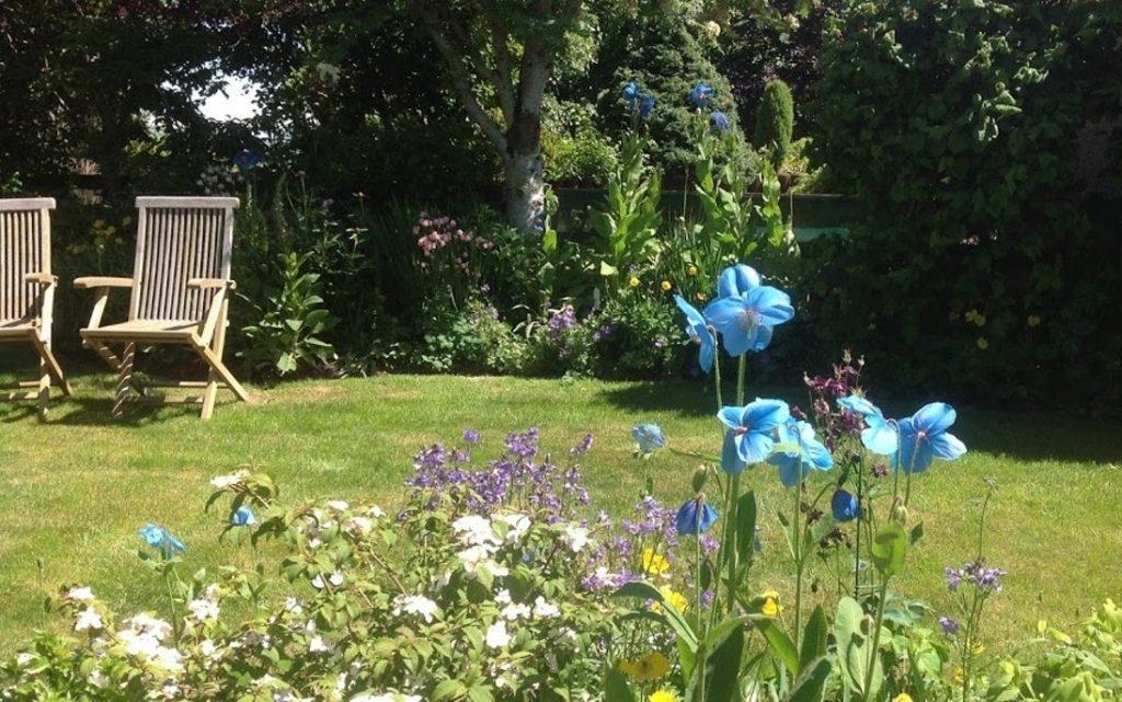 Mec In Garden setting
