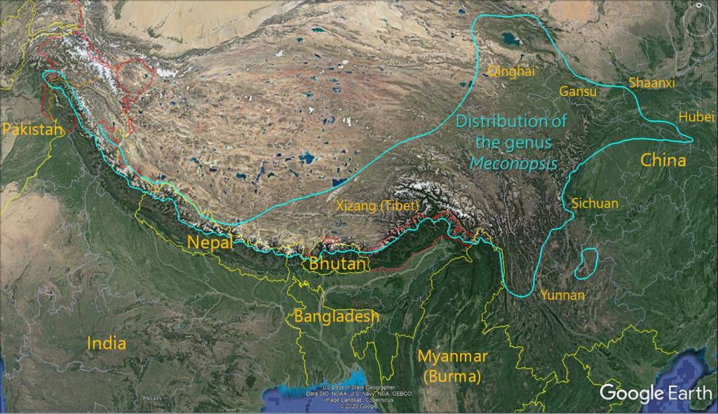 Mec Distribution Map Ver3